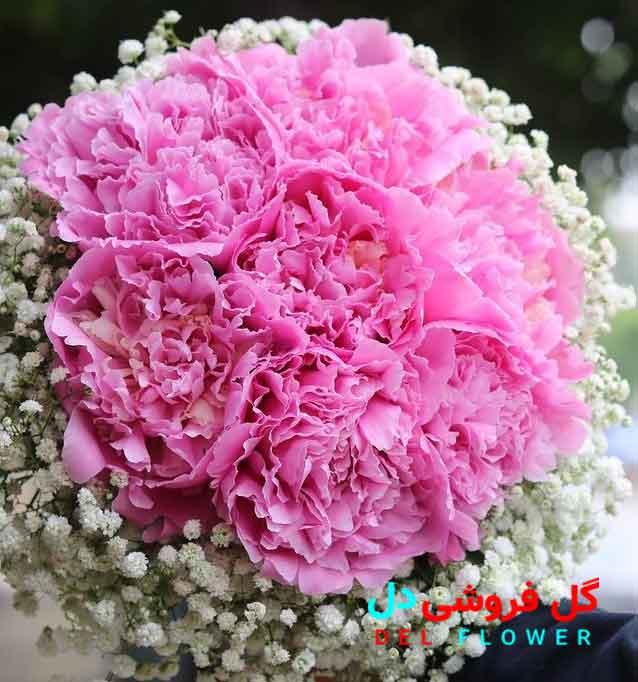 دسته گل عروس لاکچری
