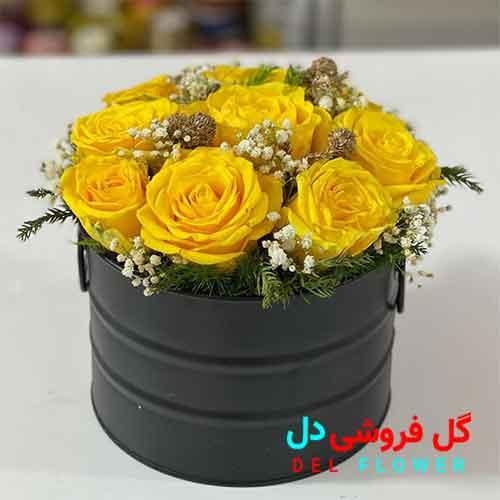 باکس گل رز زرد هلندی