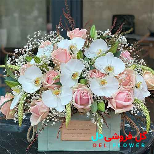سبد گل ارکیده سفید
